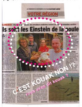 poule_pekin_Einstein