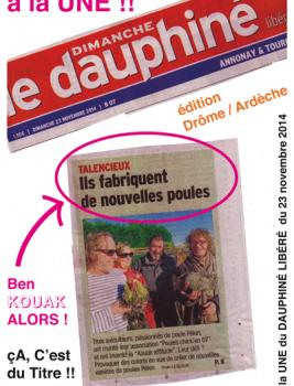 poule_pekin_le_dauphine