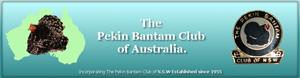thepekin_australian