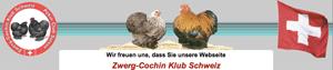 zwerg-cochin_klub_Schweiz